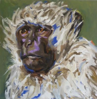 Scruffy Monkey - Anja Mueller-Wood